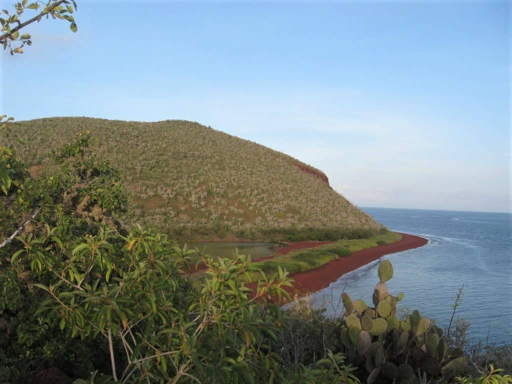 A beautiful red sand beach