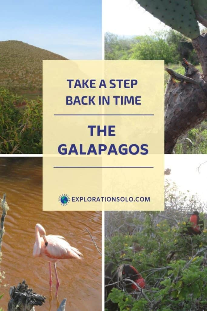 A solo traveler on a group tour of the Galapagos