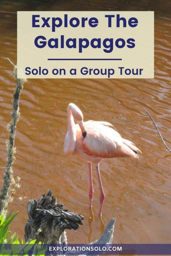 Touring the Galapagos as a solo traveler