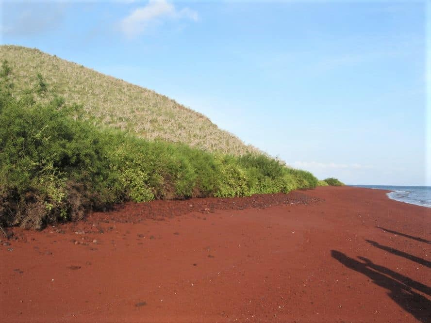 Walking across the red sand beach