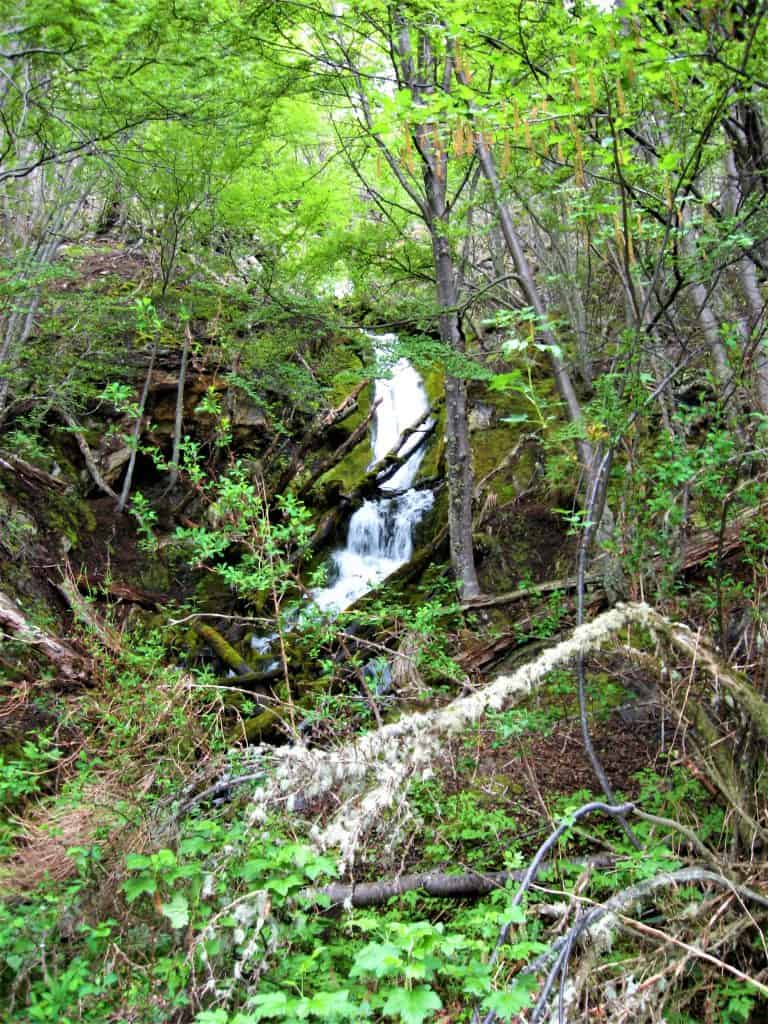 The waterfall at La Macarena as I toured Tierra del Fuego as a solo traveler in Ushuaia