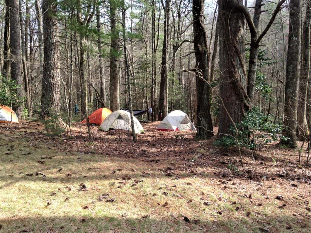 Tents up at Jacobs Branch campsite